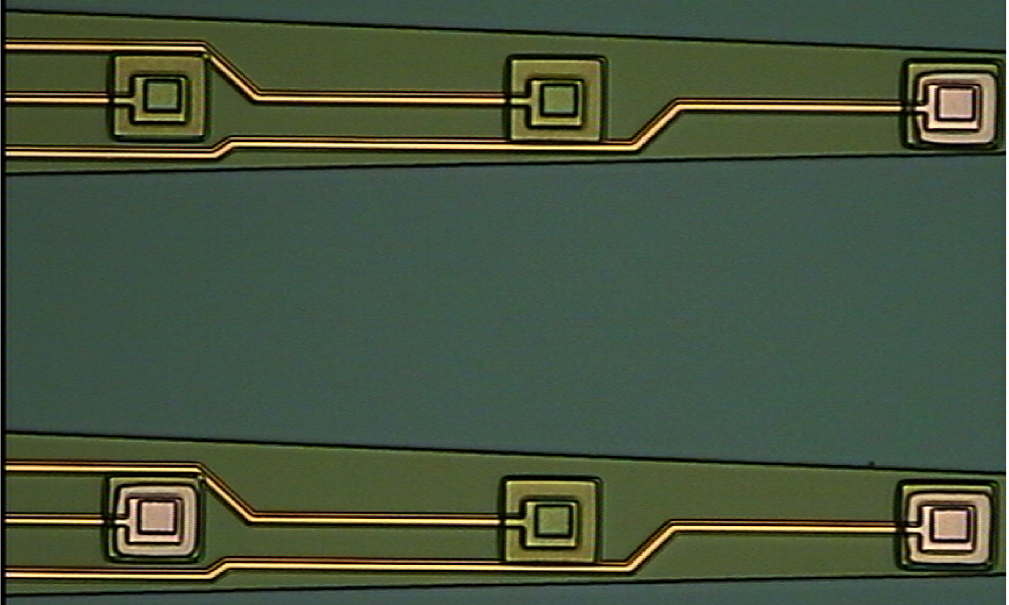 Neuroelectronic Systems